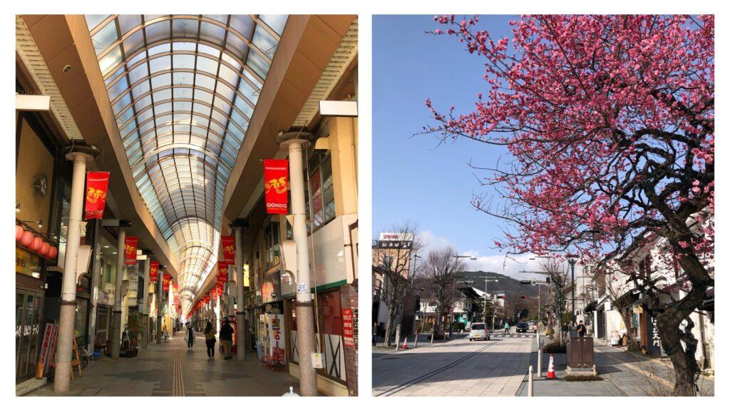 Nagano City